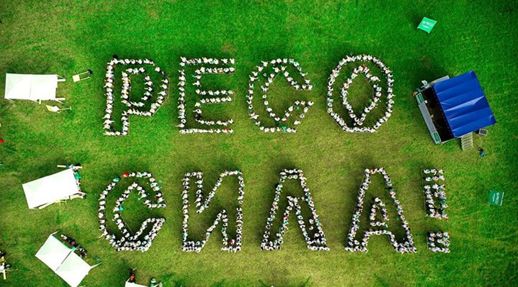 ОСАГО страховая компания PECO