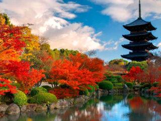 Медицинская страховка для поездки в Японию