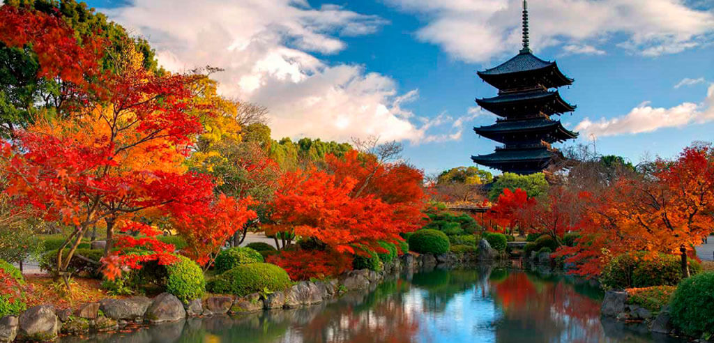 Япония